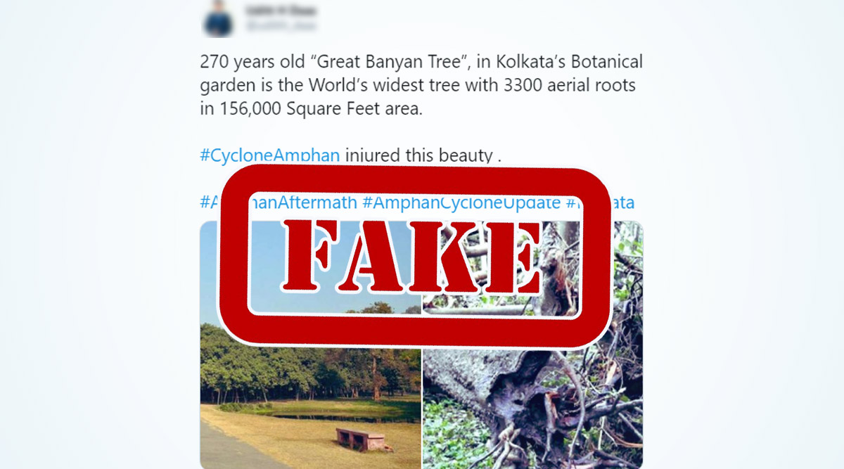 The Great Banyan Tree in Kolkata's Botanical Garden Is Fine, Park Employee Clarifies in Viral Video After Fake News of Cyclone Amphan Damaging the 270-YO Tree Surfaced Online