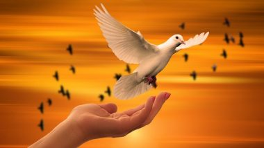 International Day of Living Together in Peace 2020: Date And Significance of UN Designated Day