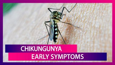 Chikungunya Symptoms: From Fever To Eye Pain, Signs Of This Mosquito-Borne Disease