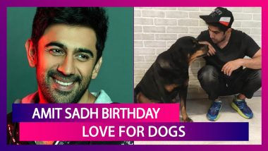 Amit Sadh Birthday: Mini Photo Album That Shows Actor's Love For Dogs!