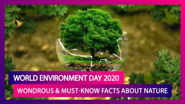 World Environment Day 2020: Weird Yet Wondrous Facts About Nature