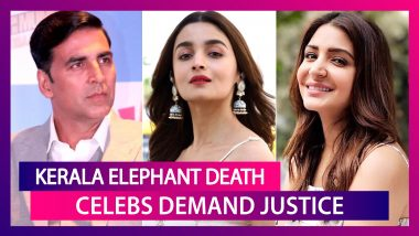 Rata Tata Calls It 'Meditated Murder'; Anushka Sharma, Virat Kohli Want Justice For Pregnant Elephant Killed In Kerala