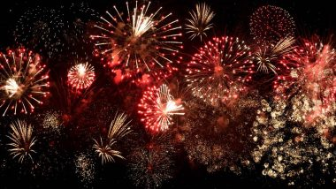 Canada Day 2020 Fireworks Live Streaming Online For Free: Where and How to Watch the Virtual Events to Mark This Year's Dominion Day
