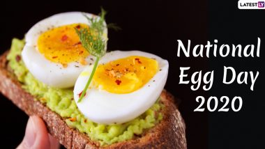 National Egg Day 2020 Images & HD Wallpapers For Free Download Online: Healthy Quotes, WhatsApp Stickers & Facebook Messages to Celebrate The Egg-cellent Day!