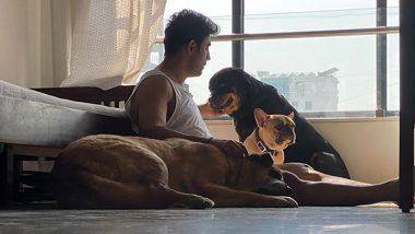 Amit Sadh Birthday: Mini Photo Album That Shows Actor's Immense Love For Doggos!