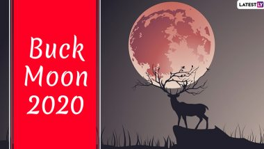 Buck Moon 2020 Date and Time: Know Everything About the Full Moon of July Coinciding With Penumbral Lunar Eclipse