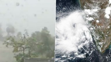 Mumbai Hit by Fierce Rainfall, Gusty Winds; Trees and Poles Uprooted: Cyclone Nisarga Live Tracker And News Updates