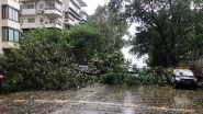 Cyclone Nisarga Videos And Photos: See Visuals of Gusty Winds From Alibaug, Mumbai And Other Places in Maharashtra And Gujarat