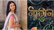 Naagin 5: Divyanka Tripathi Quashes Reports of Being Part of Ekta Kapoor's Supernatural Drama  Alongside Kratika Sengar and Asim  Riaz (View Tweet)