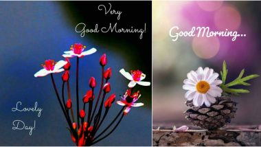 Good Morning HD Images & World Environment Day 2020 Quotes: Wish Vishwa Paryavaran Diwas With WED Messages, WhatsApp Stickers and GIF Greetings