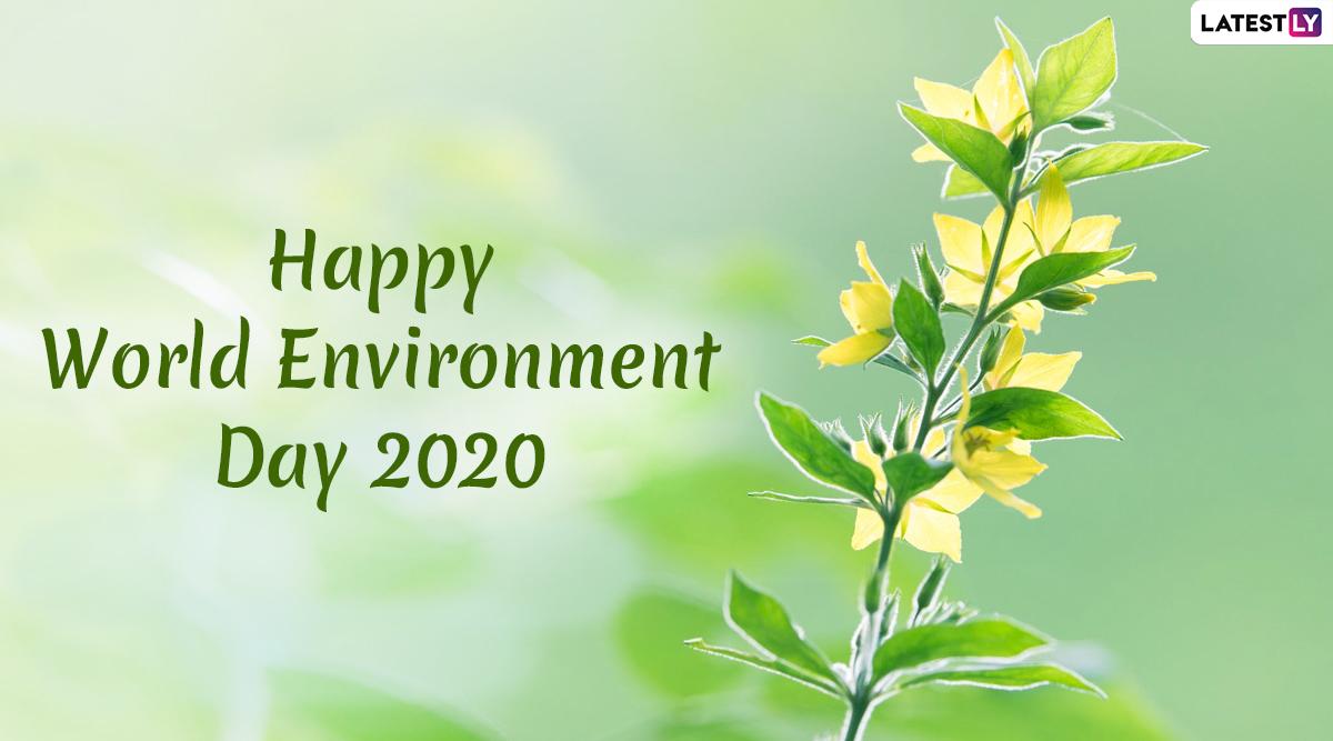 world environment day - photo #41
