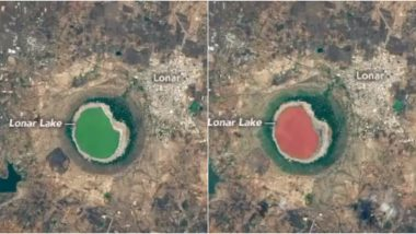 NASA Captures Maharashtra's Lonar Lake That Turned Pink Mysteriously, Know Why 50,000 Years Old Crater Lake Changed Its Colour