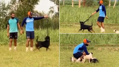 Mohammed Shami Sprints With His Pet Dog Jack to Improve Running Speed (Watch Video)