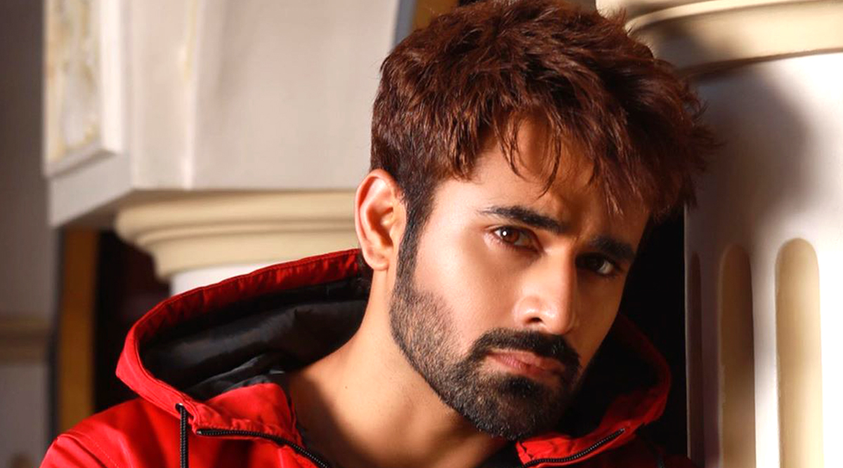 Naagin 3s Pearl V Puri Extends Financial Help to More