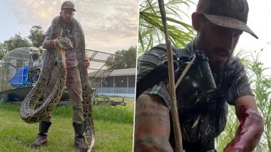 Florida Snake Hunter Catches Giant Man-Eater 17-Foot Python After a Bloody Battle (Watch Terrifying Pic and Video)