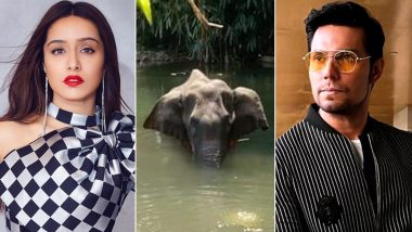 Shraddha Kapoor, Randeep Hooda And Others React To The Brutal Killing of Pregnant Elephant After Being Fed Firecracker-Laden Fruit, Urge Perpetrators To Be Punished (View Tweets)