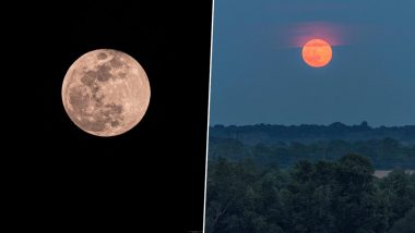 Strawberry Moon 2020 Photos: Netizens Share Beautiful Images of the Full Moon of June Before the Penumbral Lunar Eclipse Tonight