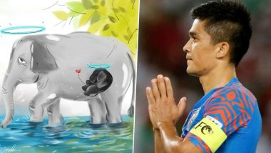 Sunil Chhetri Condemns Horrendous Death of Pregnant Elephant, Says 'Hope Monsters Pay a Hard Price' (See Post)