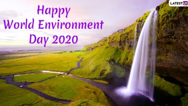 World Environment Day 2020 Date & Theme: Know History, Significance and Celebrations Related to WED