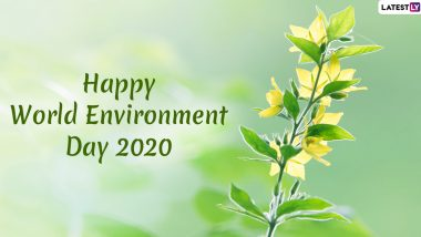 World Environment Day Images & HD Wallpapers for Free Download Online: Wish Vishwa Paryavaran Diwas 2020 With Slogans, WhatsApp Stickers and GIF Greetings on WED