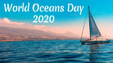 World Oceans Day 2020 Date And Theme: Know The History and Significance of the Day That Aims to Protect The Ocean and Sustainably Use Marine Resources