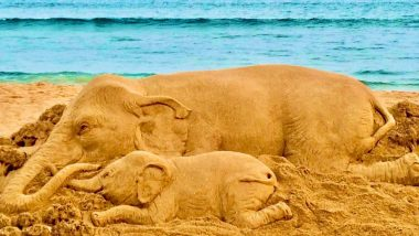'Humanity Has Failed Again,' Sudarsan Pattnaik Shares Save Elephant Sand Art Amid Saddening Death of Pregnant Elephant in Kerala (View Pic)