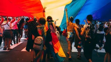 LGBTQ+ Flags, Colours and Meanings: In June Pride Month 2020, Here's A Complete Guide to the Queer Flags and What They Mean