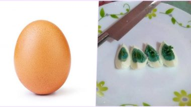 National Egg Day 2020: From the World Record Egg to Ones With Green Yolks, Egg-citing Stories About Eggs That Went Viral