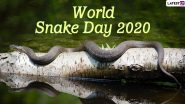 World Snake Day 2020 HD Images and Wallpapers for Free Download Online: Celebrate the Slithery Creatures With These Stunning Photos of Serpents