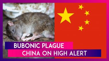 Bubonic Plague: China On High Alert After Reported Case Of Black Death; Everything You Need To Know