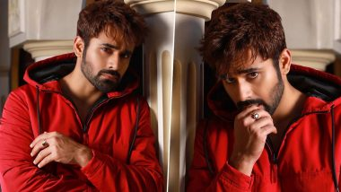 Pearl V Puri Drives Home From Mumbai To Agra, Reveals He Undertook The Roadtrip Because of His Worried Mother (Read Deets)