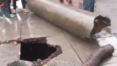 Thane Rains: Part of Khartan Road Caved in After Incessant Rainfall, None Injured