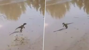 Cute Baby Dinosaur Playing in Puddles is the Best Use of 3D Animation, Watch Video