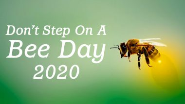 Don't Step on a Bee Day 2020 Date And Significance: Know About the Day That Promotes Protection of Bees