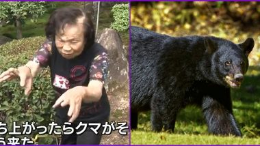 82-Year-Old Japanese Grandma Fight Off Bear in Her Backyard, Sustains Few Injuries on Her Face But Says, 'I Sent Him Flying!' (Watch Video)