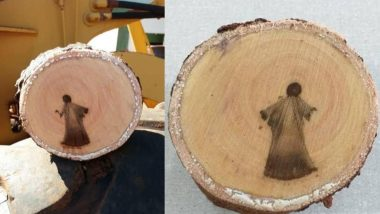 Jesus Christ Image Found Inside Cut Tree Branch in Brazil Goes Viral, Biologist Believes It's 'Incorrect Perception of Stimulus' (See Pictures)
