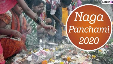 Nag Panchami 2020 Date in Sawan: Know The Significance, Traditions And Celebrations Related to Hindu Festival Worshipping Snakes