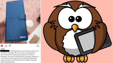 Owl 'Apparently' Drops a Phone in Person's Terrace, Netizens Say It's Call From Hogwarts!