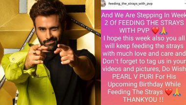 Pearl V Puri, On His Birthday, Asks Fans To Feed Strays Instead of Sending Him Gifts