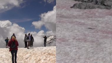 Pink Ice Cover Italian Alps Due to Growing Algae Caused by Climate Change, May Trigger Melting (See Pictures And Videos)