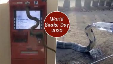 World Snake Day 2020: From Serpent Crawling on ATM Machine to King Cobra Drinking Water From Bottle, Watch Viral Videos of Snakes That Ssscared The Netizens