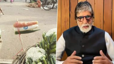 Independence Day 2020: Amitabh Bachchan Shares a Beautiful Pic of Indian Flag Made Out of Vegetables (View Post)