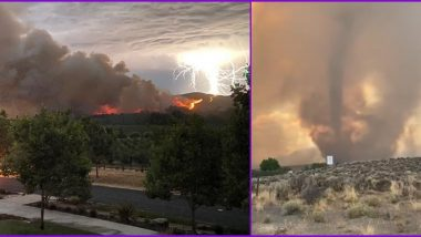 Horrific Picture Captures Massive Lightning Strike Causing Wildfires in California, Check Other Scary Fire Tornado Videos From The Disaster