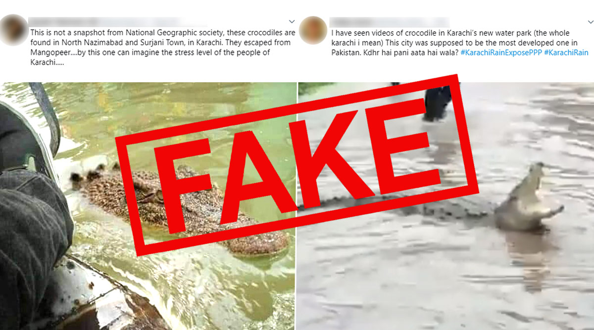 Crocodiles in Karachi Streets Escaped From Manghopir Shrine? Pics and Video  of Reptile on Flooded Streets Shared With Fake Claims! Know The Truth | 🔎  LatestLY
