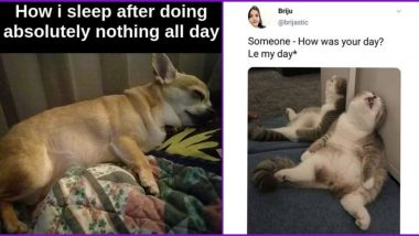 National Lazy Day 2020 Funny Memes and Tweets: Netizens Share Jokes That Every Lazy Bum Will Completely Relate To!