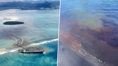 Mauritius Declares Environmental Emergency After 4000 Tons of Oil Spill From Ship Into Coral Reef Of the Indian Ocean (Pictures And Videos)