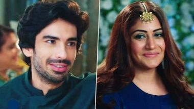 Naagin 5: Surbhi Chandna and Mohit Sehgal's Fresh Pairing In This Supernatural Saga Is Hit or Flop? Vote Now