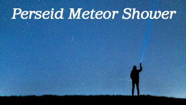 Perseid Meteor Shower in India Date and Timings: Know How and When to Watch The Brightest Celestial Shower From Mumbai, Pune, Bangalore, Delhi, Hyderabad and Other Major Cities