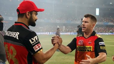David Warner Takes a Dig at RCB after Fan Backs Virat Kohli-Led Team to Lift IPL 2020 Title
