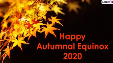 Happy Autumnal Equinox 2020 Images and HD Wallpapers for Free Download Online: WhatsApp Stickers, Facebook Messages and GIFs to Send on the First Day of Fall